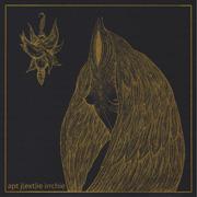 irr + ajr - Night Wearing Feathers LP cvr