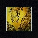 foil tardigrade 01
